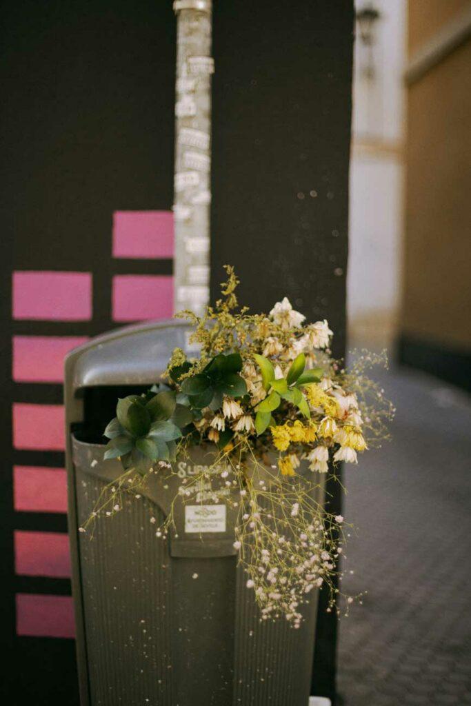 flores en la basura alejandra amere