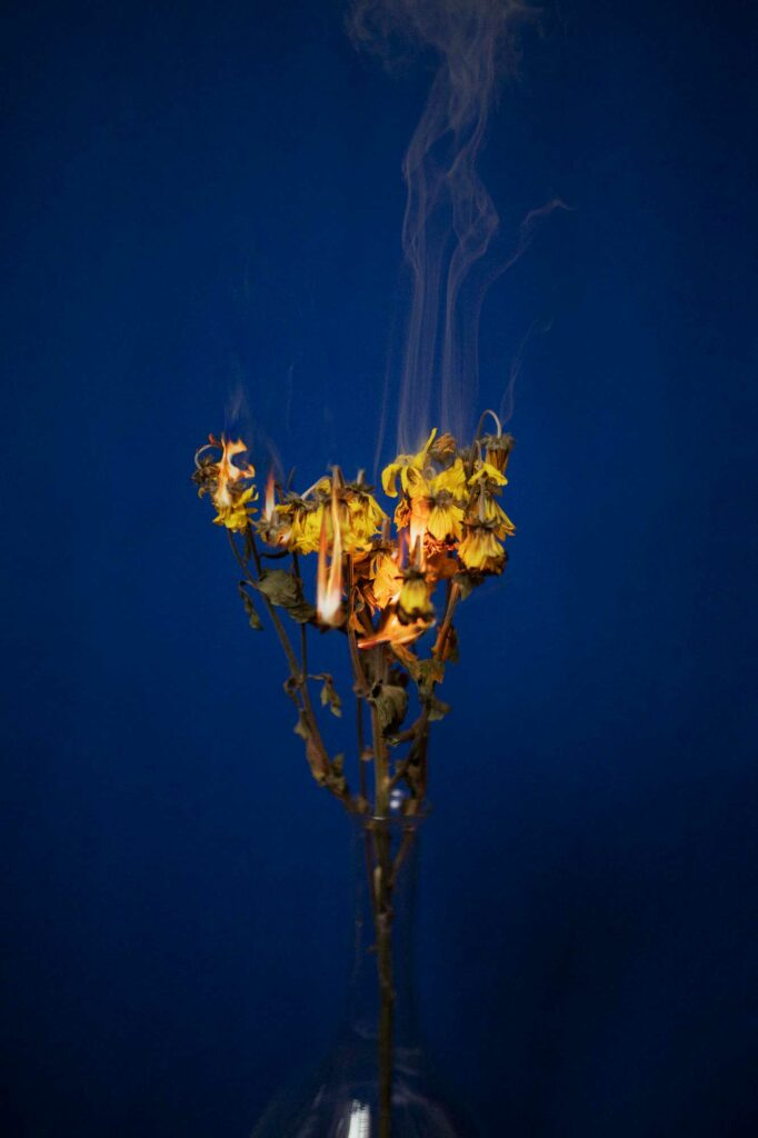 alejandra amere perosnal project intimate fire